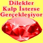 hergunbirbilgi---diamond-dilekler-kalp-isterse-sari