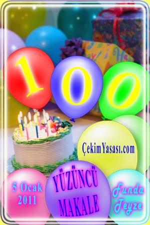 100.makale
