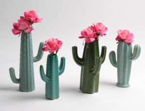 kaktus-vazo